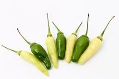 chillies Obraz Royalty Free