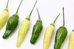 chillies Stock Foto