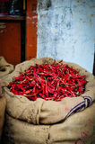 Chillies bag. In a food market, India Royalty Free Stock Photography
