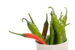Chillies on bowl Royalty Free Stock Photo