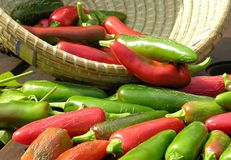Chillies (chilies)in a basket Royalty Free Stock Photo