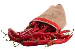 chillies czerwoni Zdjęcia Royalty Free