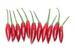 chillies czerwoni Obrazy Stock
