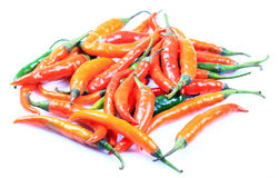 chillies czerwoni Obraz Stock