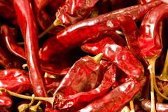 Chillies Dried Stock Photography