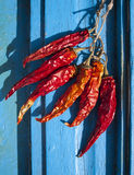 Chillies hang to dry Stock Image