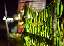 Chillies for sale. Green chillies strung up for sale at a beach in Chennai, India Royalty Free Stock Images