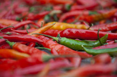 Chillies Stock Image