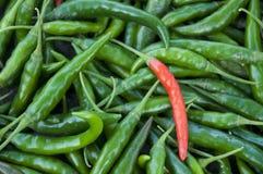 Chillies Stock Photos