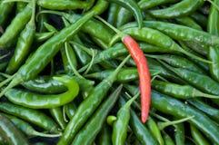 Chillies Stock Photo