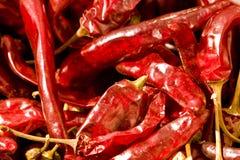chillies suszący Fotografia Stock