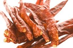 chillies suszone odizolowywającymi zdjęcie royalty free