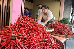 Chillies. Traders sorting chillies at a market in the city of Solo, Central Java, Indonesia stock photography
