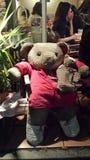 Chillin niedźwiedź Obrazy Royalty Free