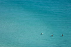 Chilling surfers, Cape Town Royalty Free Stock Images