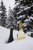Chilling Wine. Two bottles of different wines displayed in an untouched snowdrift as they are chilled Royalty Free Stock Photos