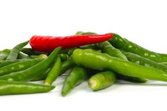 Chillis Photographie stock libre de droits