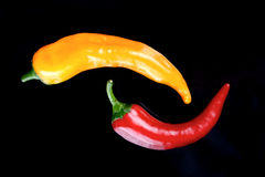 Chillis d'un plat Photographie stock