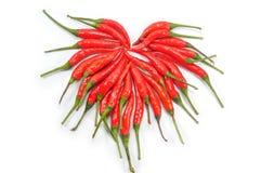 Chillis d'un rouge ardent Photo stock