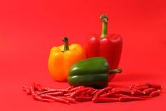 Chillis e paprika vermelhos Fotografia de Stock