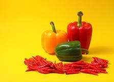 Chillis e paprika vermelhos Fotografia de Stock Royalty Free