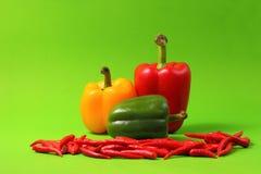 Chillis e paprika vermelhos Fotos de Stock