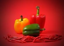 Chillis e paprika vermelhos Imagem de Stock