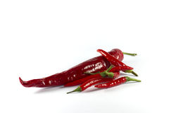 Chillis - grand et petit Photographie stock