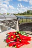 Chillis i Zucchinis na Odpierającym wierzchołku Zdjęcia Royalty Free