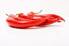 Chillis rojos vibrantes Fotos de archivo libres de regalías
