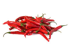 Chillis rouges Photos stock