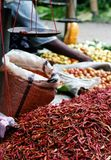 Chillis for sale. In an outdoor market in Heho town, Burma Stock Photo