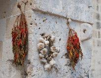 Chillis secco ed aglio Fotografia Stock Libera da Diritti