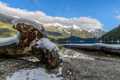 Chilliwack jezioro z odbija góry Redoubt Skagit pasmem Zdjęcie Royalty Free