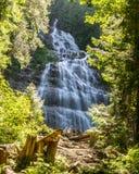 Chilliwack KANADA - JULI 14, 2018: Folket i brud- skyler provinsiella nedgångar parkerar British Columbia Kanada sommardag royaltyfria bilder