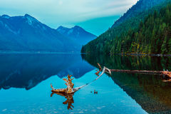 The Chilliwack Lake in the Chilliwack Lake Provincial Park, Brit royalty free stock images