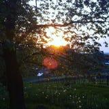 Chillout słońce Zdjęcia Royalty Free