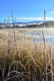A chilly morning at Boya Lake Provincial Park Royalty Free Stock Images