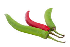 Chilly pepper Stock Photos
