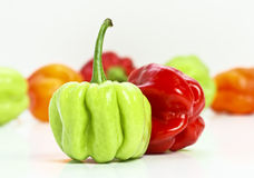 Chilly pepper background Royalty Free Stock Images