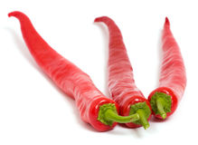 Chilly peppers Royalty Free Stock Images