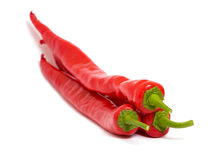 Chilly peppers Stock Photography