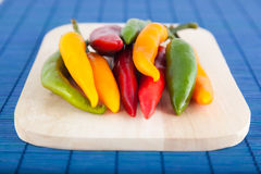 Chilly peppers Royalty Free Stock Photo