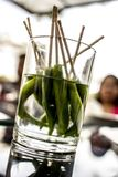 Chilly. Spicy and green Royalty Free Stock Photography