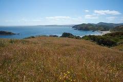 Chiloé linia brzegowa Zdjęcie Royalty Free