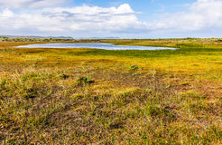 Chiloe National Park, Chile Stock Photography