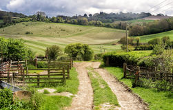 Chiltern Hills in England Royalty Free Stock Photo