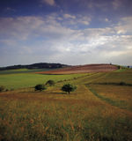 Chilterns Royalty Free Stock Photos