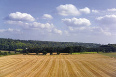 Chilterns de Buckinghamshire Fotografia de Stock Royalty Free