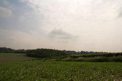 Chilterns landscape in Buckinghamshire, England Stock Photo
